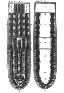 416px-Slave_ship_diagram