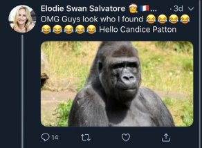 Candice - Racist Calls her a Gorilla